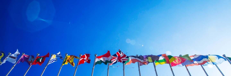 Concesionarios internacionales