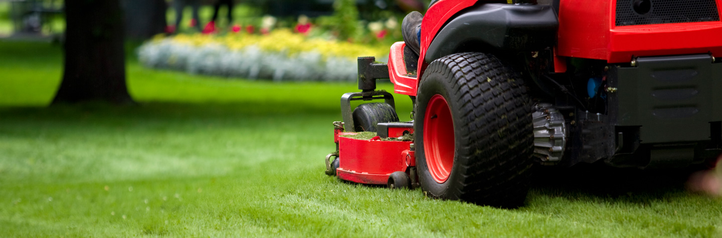 Lawn and garden batteries - red riding mower cutting grass